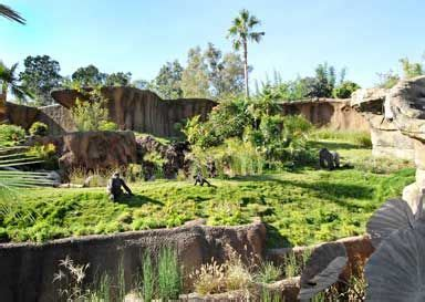 211 Best Images About Zoo Enclosures On Pinterest