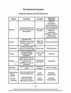 Grade 10 Sci Module Teacher U0026 39 S Guide Unit 3