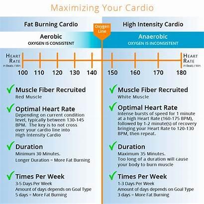 Cardio Types Exercise Workouts Take Movements Optimize