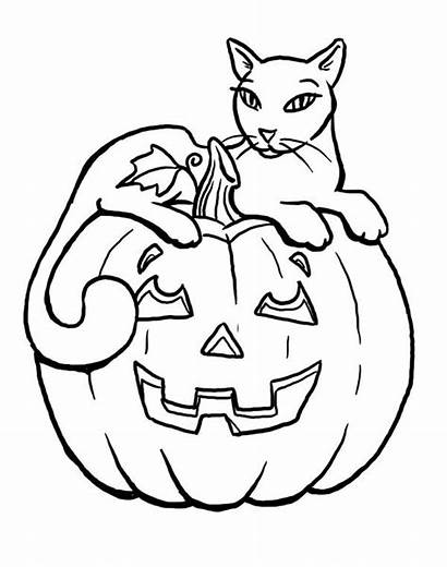 Coloring Cat Sitting Pumpkins