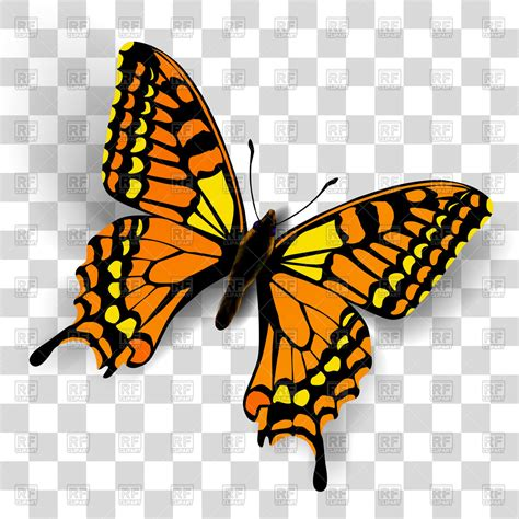 Image Without Background Butterfly Clipart No Background