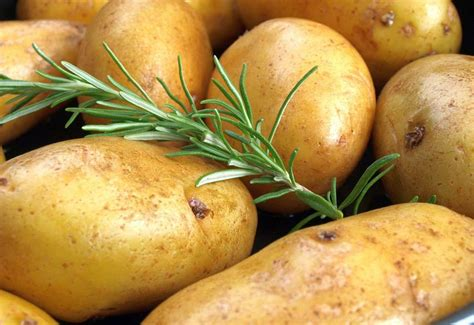 kartoffeln kochen kochrezepte von kochen kueche