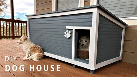house dogs diy insulated house build