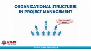 Project Management Organizational Structure