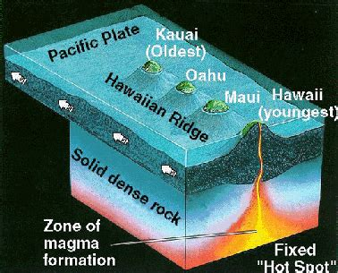 Diagram Of A Hawaiian Volcano by Plate Tectonic Setting