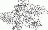 Hawaiian Coloring Flower Pages Printable Lei Flowers Themed Luau Sheets Drawing Blank Hawaii Getcolorings Leaves Getdrawings Drawings Taro Leaf Paintingvalley sketch template