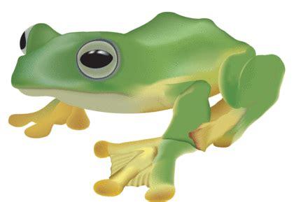 La grenouille qui veut se faire aussi grosse que le boeuf Comptes Rendus 610 Mots
