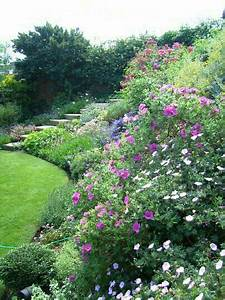 epingle par alena wagnerova sur garden pinterest With idee amenagement jardin paysager 16 massifs de roses mon jardin reve