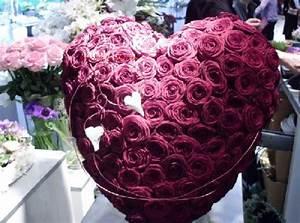 Beau Bouquet De Fleur : tr s beau bouquet de fleurs photos de magnolisafleur ~ Dallasstarsshop.com Idées de Décoration