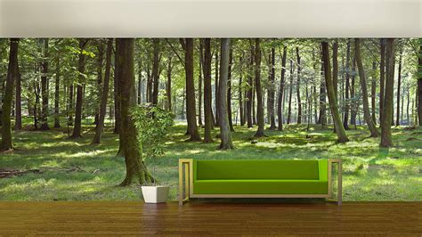 Woodland Forest Self Adhesive Wallpaper By Oakdene Designs