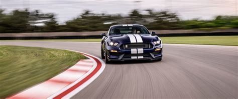 ford mustang shelby gt  bringing  heat