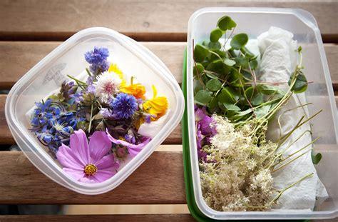 les fleurs comestibles pour une cuisine colorée et pleine de surprises la assiette