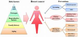 Schematic Diagram Of Risk Factors And Preventions Of
