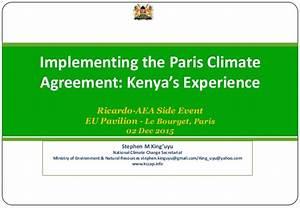 Ricardo Implementing the Paris Climate Agreement (COP21 ...