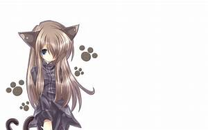 Anime, Cat, Girl, Hd, Wallpapers, Free, Download, For, Desktop, Pc, Laptop