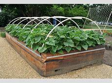 Raised Vegetable Garden Beds On Concrete The Diy Cinder