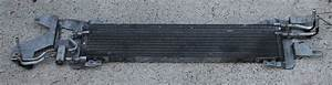 1999 Ford Crown Victoria Transmission Oil Cooler Pictures