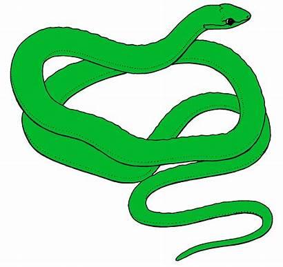 Snake Clipart Clip Animated Cliparts Anaconda Snakes