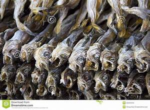 Dried fish business plan
