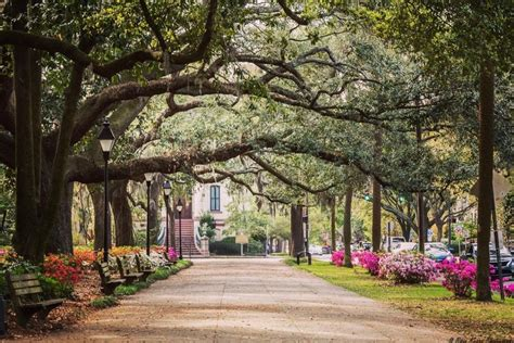 The 2020 Visitor Guide to Savannah, Georgia: Eat, Stay & Play