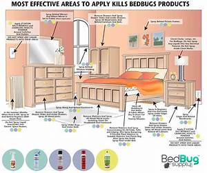 how to get rid of bed bugs extended With cleaning after bed bug treatment