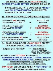 Swiss Sense Test : the oxytocin cell ~ Watch28wear.com Haus und Dekorationen