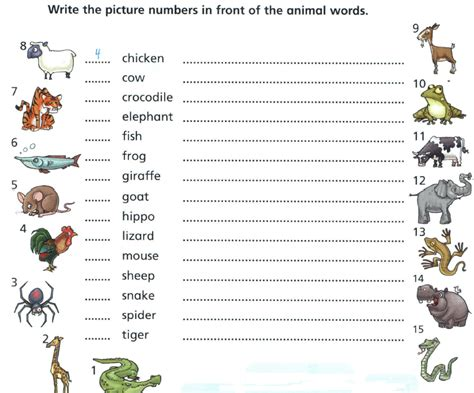 reading worksheets for starters animal words oxbridge