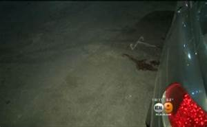 Vicious road rage incident in Los Angeles turns to theft ...