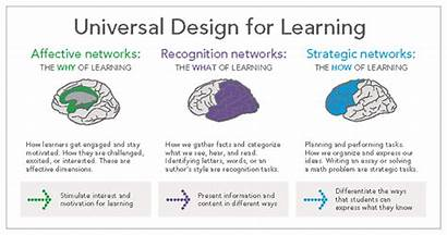 Udl Universal Learning Brain Guidelines Three Graphic