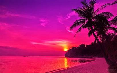 Sunset Pink Beach Purple Iphone Sunsets Wallpapers
