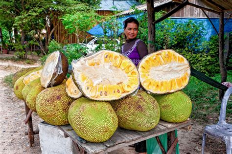 Is Jackfruit The Next Big Meat Subs Ute
