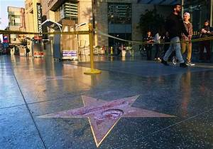 Suspect arrested in destruction of Trump's Hollywood star ...