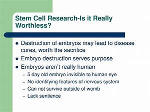 How To Write A Business Essay Benefits Of Stem Cell Research Essay Best Annotated Bibliography Writing  Websites Sf Health Care Reform Essay also Example Essay Thesis Statement Pros Of Stem Cell Research Essay Best Critical Analysis Essay Editor  Business Law Essay Questions