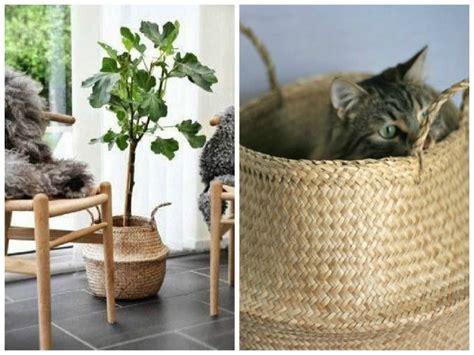panier basket chambre 9 best images about deco panier boule on