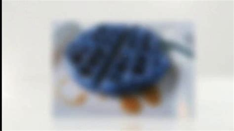 Images Of Blue Waffles Blue Waffles Www Imgkid The Image Kid Has It