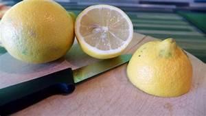 Backofen Reinigen Mit Zitrone : backofen umweltfreundlich reinigen gelsenwasser blog ~ Buech-reservation.com Haus und Dekorationen