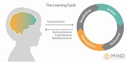 Action Cycle Perception Brain Learning Mindset Education