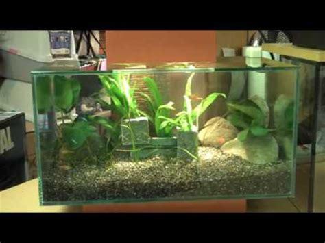 New Fluval Edge Aquarium Available At Aquariums West Youtube