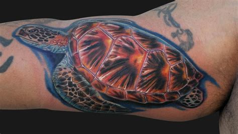 Turtle Tattoos Designs, Ideas And Meaning  Tattoos For You