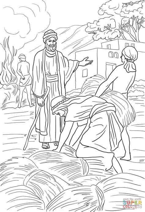 parable   wheat  weeds coloring page
