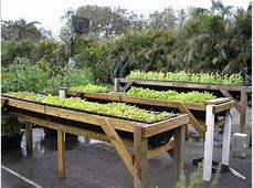 DIY Raised beds in the vegetable garden – ideas and materials