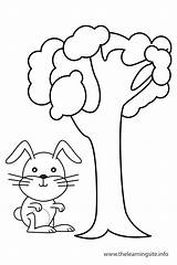 Preposition Prepositions Coloring Outline Drawing Worksheets Rabbit Tree Flashcard Flashcards Pages Learning Teaching Grade sketch template