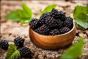 8 Amazing Health Benefits Of Blackberries
