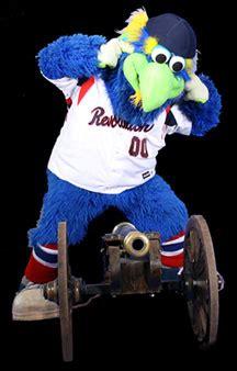 york revolution baseball team holds auditions  mascot
