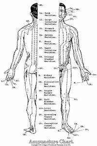 Acupuncture Meridians Chart