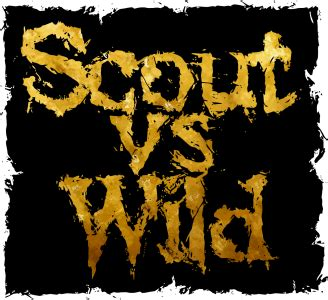 Tidewater Boats Vs Scout by Scout Vs 10 328 215 300 Pipsico Bsa