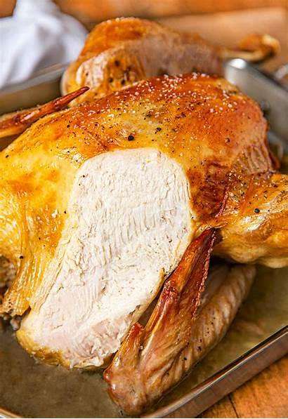Turkey Roast Baste Thanksgiving Dinner Basting Pan