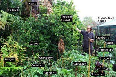permaculture revolution lente