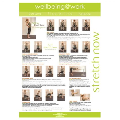 *** you should never feel pain with stretching exercises ***. Stretch poster for wellbeing at work - Stretch Now
