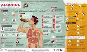 How Alcohol Travels Through the Body Visual ly